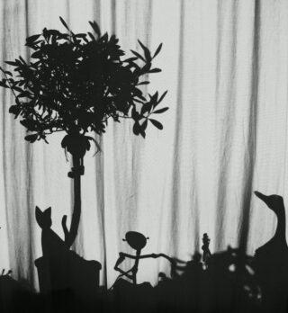 Schattenspiel am Vorhang