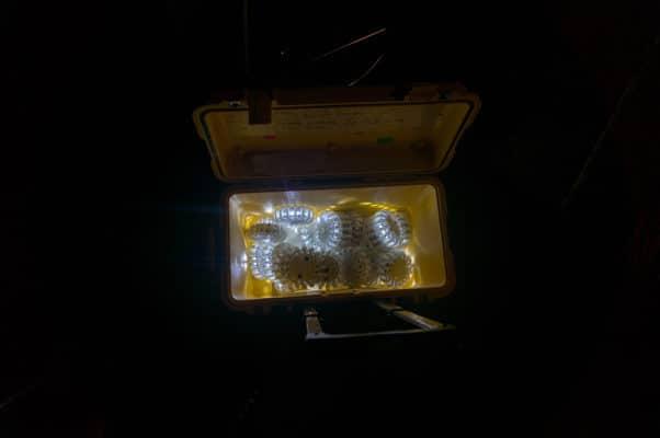 Notfalllichter auf der Tour von Milky Chance