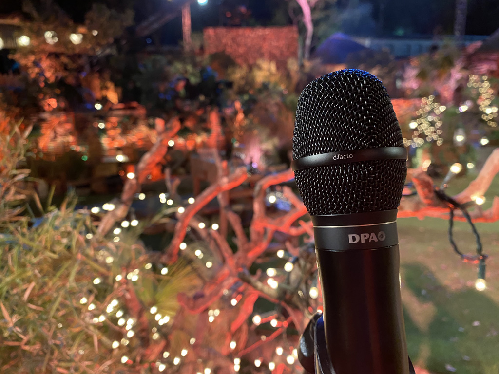 Mikrofon vor Kulisse