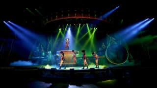 Neuauflage Lion King - Rhythm of the Pride Lands 2020 im Disneyland mit Zacktrack Follows